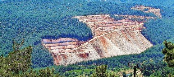 Ormanlık alanlarla ilgili yeni yönetmelik yayınlandı